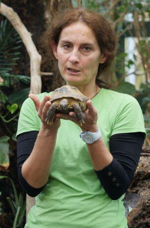Agata Borucka z Warszawskiego Ogrodu Zoologicznego przybliża strategie życiowe, które wykształciły zwierzęta, aby wydać na świat i wychować potomstwo